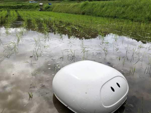 田んぼ農業に役立つアイガモロボットをご紹介!