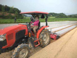 赤いトラクターに乗る農業女子