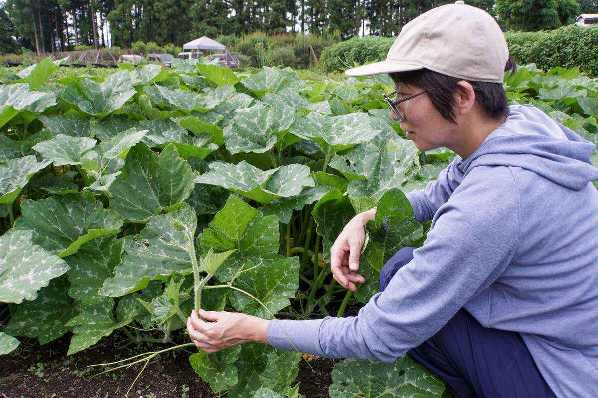 滋賀県に誕生した女性農家集団「しが農業女子 100人プロジェクト」が凄い!