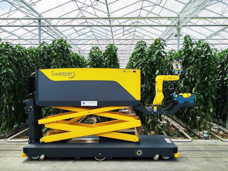 パプリカを収穫してくれるロボットが出現「スウィーパー」とは?